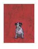 Small Dog Sam Toft