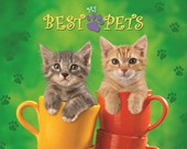 Cats in Cups My Best Pets