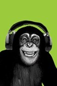 Chimpanzee Boogie Chimp in Headphones