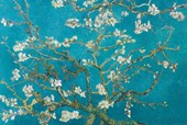 Almond Blossom (1890) Vincent Van Gogh