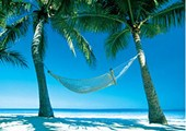 Hammock in the Sun Paradise Island