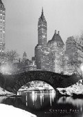 Central Park in Winter New York