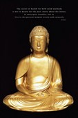 Live in the Present Moment Wisely and Earnestly Buddha, Buddhism