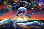 Dolphin Universe Planets, Waves and Moonlight
